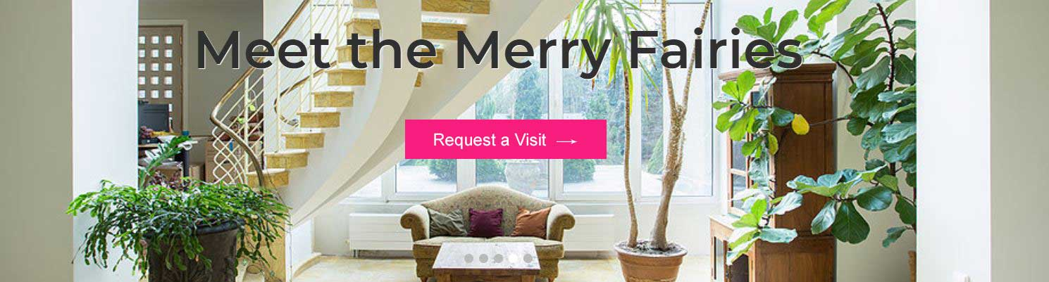 Merry Fairies Seattle Cleaning Service